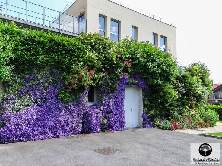 Façade végétale: un support de biodiversité urbaine - Jardins de Babylone