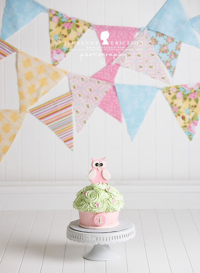 Miss S is One! – Santa Rosa Cake Smash Photographer » Jeneanne Ericsson Photography owl theme girl first birthday giant cupcake pink and mint