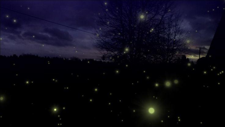Fireflies 💫
