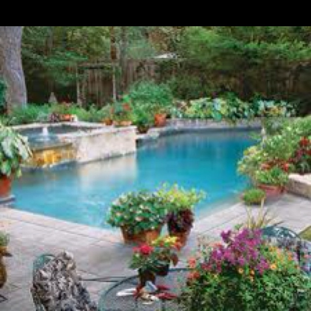 really like the way this pool fits up to the flower beds and fence plus all the plants in containers poolside container garden sparkling pools - Garden Ideas Around Swimming Pools