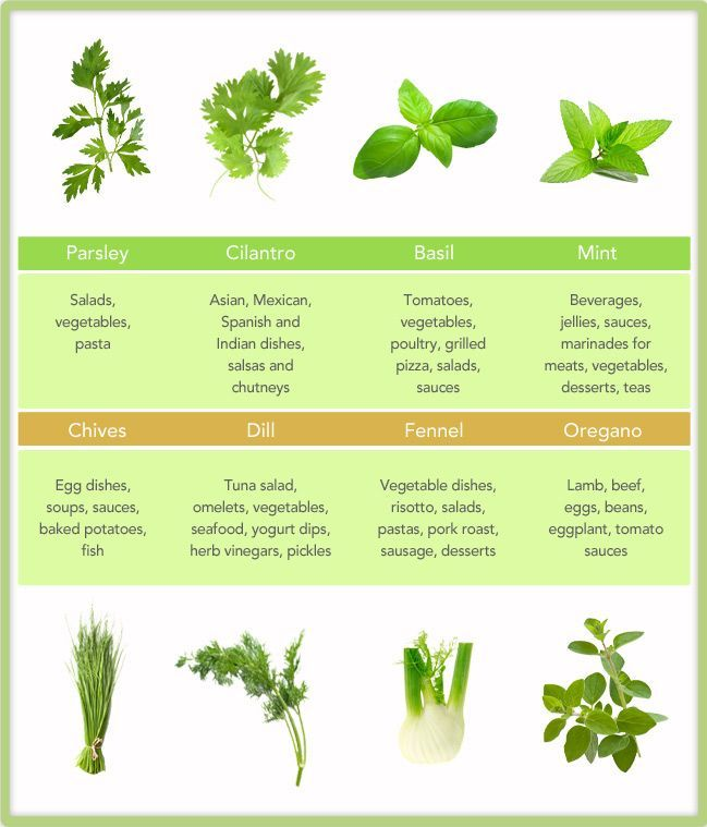 Kitchen Herb Gardens That Will Make Cooking Wonderful: 26 Best Growing Herbs Indoors Images On Pinterest