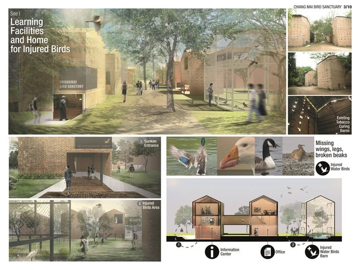 Site 1: Boutique hotel, learning facilities and home for injured birds.