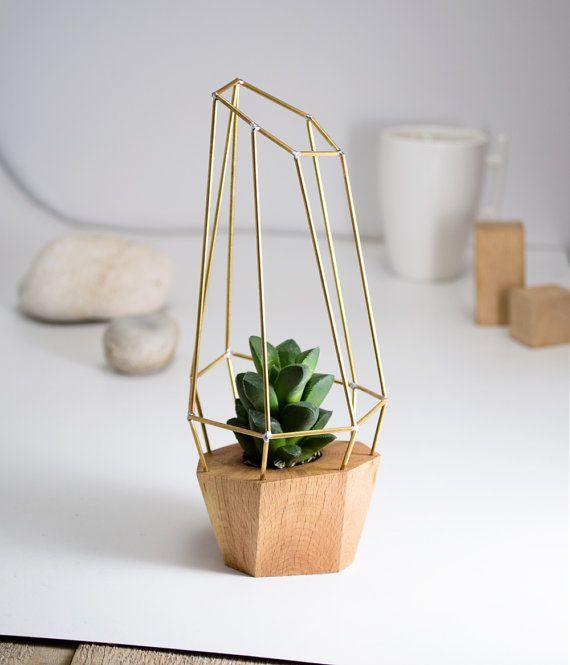 Planteur de géométrique facettes moderne - pour l'usine d'Air, succulentes et cactus - bois laiton polygone Gem