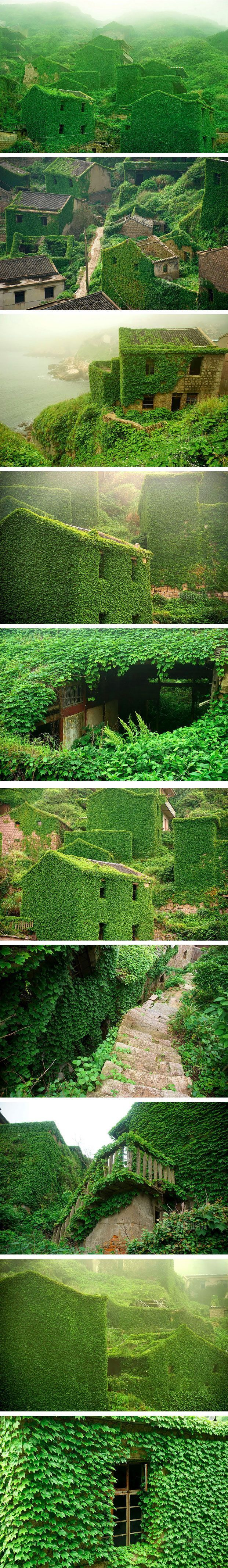 Reclaimed by Mother Nature.....Shengsi, an archipelago of almost 400 islands at the mouth of China's Yangtze river, holds a secret shrouded in time – an abandoned fishing village being reclaimed by nature. These photos by Tang Yuhong, a creative photographer based in Nanning, take us into this lost village on Goqui island.