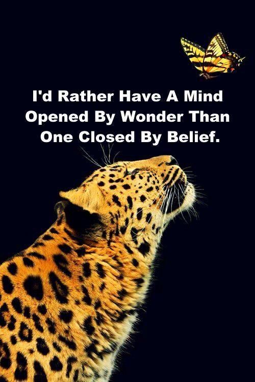 "plus > ""A mind is like a parachute, it doesn't work if it's not open."" -Frank Zappa"