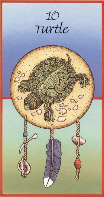 Negli insegnamenti dei nativi americani, Turtle è il simbolo più antico per il pianeta Terra. E' la personificazione della dea dell'energia, e la Madre eterna da cui le nostre vite si evolvono.