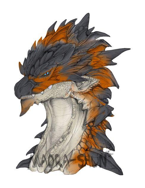 Rathian Monster Hunter Art   Monster Hunter on Dragons-Only - DeviantArt