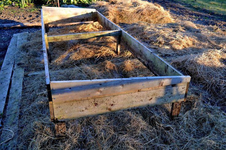 A simple hot bed frame. 300 cm x 120 cm. Sweden, December 2014. http://www.skillnadenstradgard.blogspot.se/ #garden #gardening #hotbeds #wintergarden #trädgård #odla #varmbänk