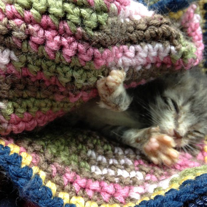 Comfort Critters patterns for animal shelter charity
