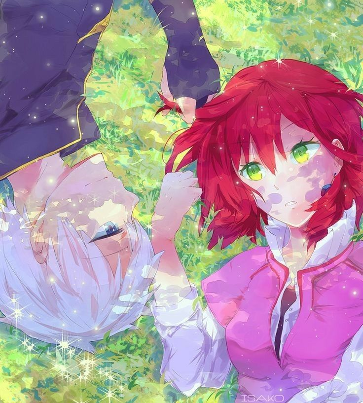 Snow White With The Red Hair Snowwhitewiththeredhair Animelove Akagami No Shirayuki Snow White With The Red Hair Romantic Anime