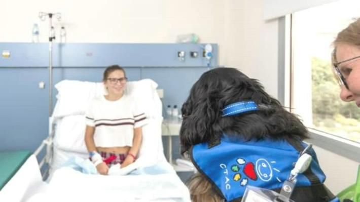 #Las mascotas ayudan a curar - LACRONICA.COM: LACRONICA.COM Las mascotas ayudan a curar LACRONICA.COM El Hospital San Juan de Dios de…
