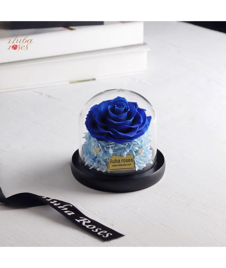 وردة ايلوبا روزز ازرق دائمة داخل فازة زجاجية Desserts All Things Cake