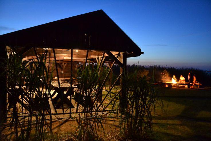 Miejsce na ognisko przy wiacie na Campingu Echo