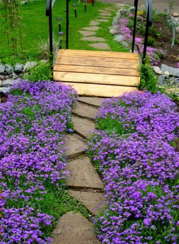 Piante perenni l 39 aubretia cruciferae adatta per giardini for Fiori per giardino perenni