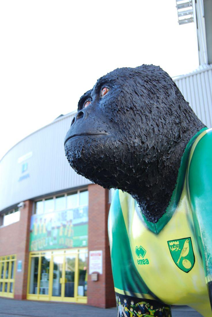 3 September | Norwich | GoGoGorilla Mr Carrow outside Norwich City Football Club