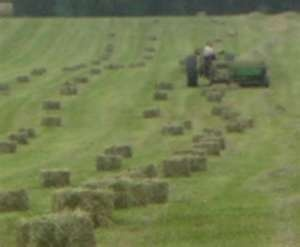 BALING HAY.  It's that time of year!