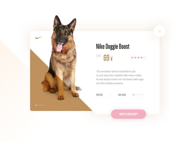Nike modal mockery - Dribbble reaction to repetitive designs by Marian Fusek