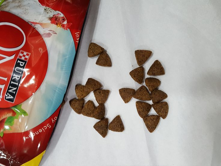 Try Purina ONE SmartBland True Instinct dog food and see the #ONEdifference for yourself! #FreeSample