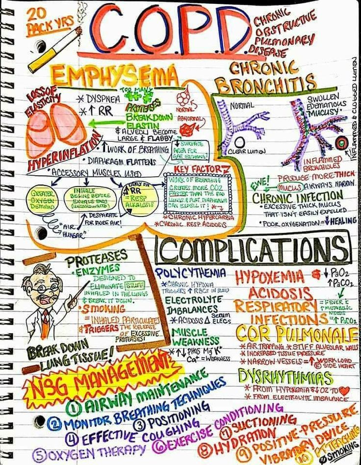 152 best Nursing school images on Pinterest Nursing schools - sample health assessment