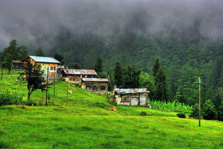 Trabzon yayla