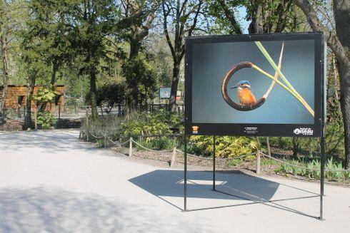 Une programmation riche au Zoo d'Amiens pendant les vacances d'avril
