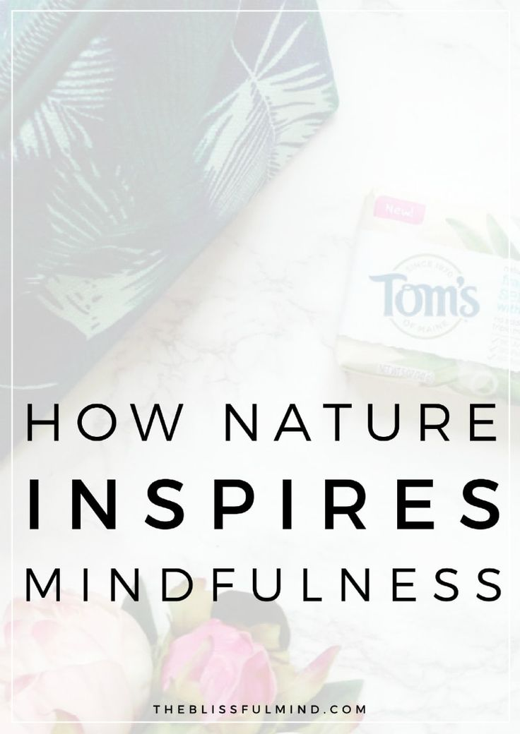 Can nature inspire you to be more mindful? Keep reading to find out how nature can help you to find calm in your busy life.
