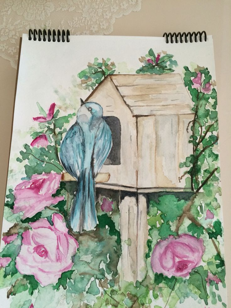 watercolour painting bird house and roses