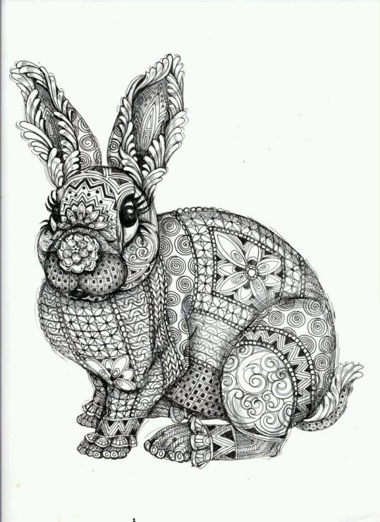 bear and hare coloring pages - photo#33