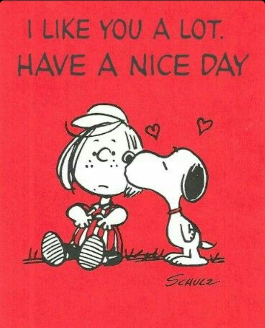 Snoopy Quotes 91 Best Snoopy Quotes Images On Pinterest  Peanuts Snoopy .
