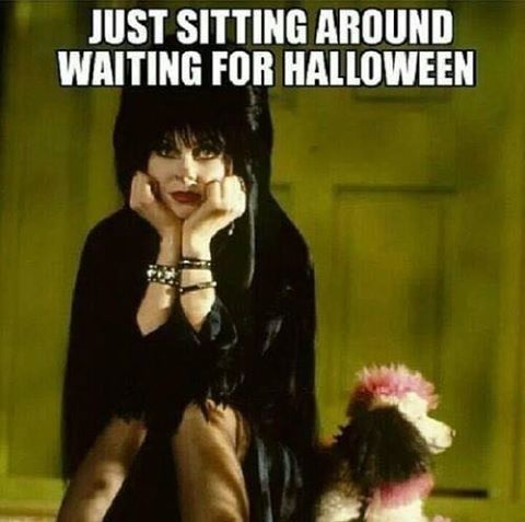 Waiting For Halloween halloween halloween quotes halloween quote elvira halloween humor funny halloween