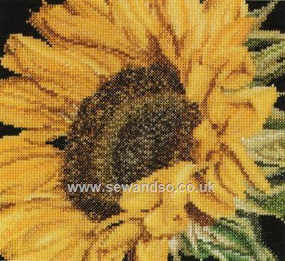 Buy+Sunflower+Cross+Stitch+Kit+Online+at+www.sewandso.co.uk