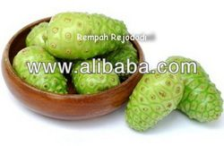 Natural Morinda Citrifolia linn extract    Introduction Noni is best and most nutritionally sound when it is pure and organic. A powdered form of the pulp is made in one of two ways. It can be freeze-dried, which generally uses the whole fruit, or the raw pulp can be dehydrated. By whichever means the dried fruit is produced, it is then ground into a powder. The powder can be purchased in bulk by weight or packed into capsules and taken as a supplement.
