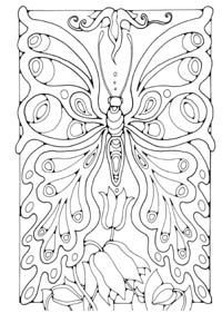 butterfly coloring pages for adults | adult coloring pages