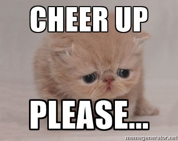 CHEER UP PLEASE... - Super Sad Cat | Meme Generator