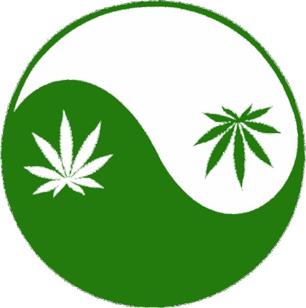 Cannabis is one of the 50 fundamental herbs in Traditional Chinese Medicine, recommended for 120 forms of disease, menstrual disorders, & wounds in the Shen Nung pharmacopeia, first compiled 4,500 years ago (~2500 BC) by the father of Chinese Medicine & i