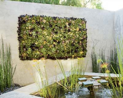 a vertical wall garden saw one at the designers showcase home all succulents with a distressed wood frame