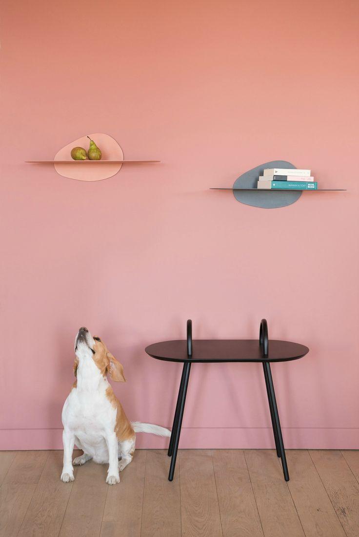 Notre ami à 4 pattes semble très intéressé par les étagères surface by Ferréol Babin !