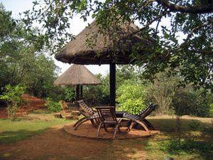 10 Eco-Friendly Hotels in India: Wildernest Nature Resort, Goa