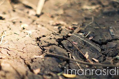 Iman Rasidi: Fotografi