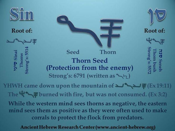 Biblical hebrew self study