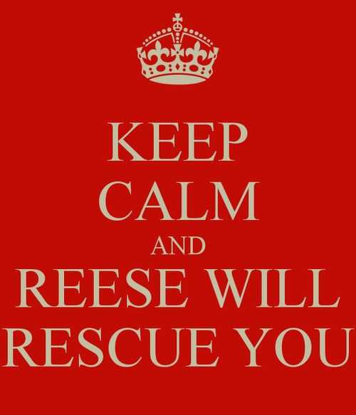 Reese will rescue you. Person of Interest, one of my favorite shows!