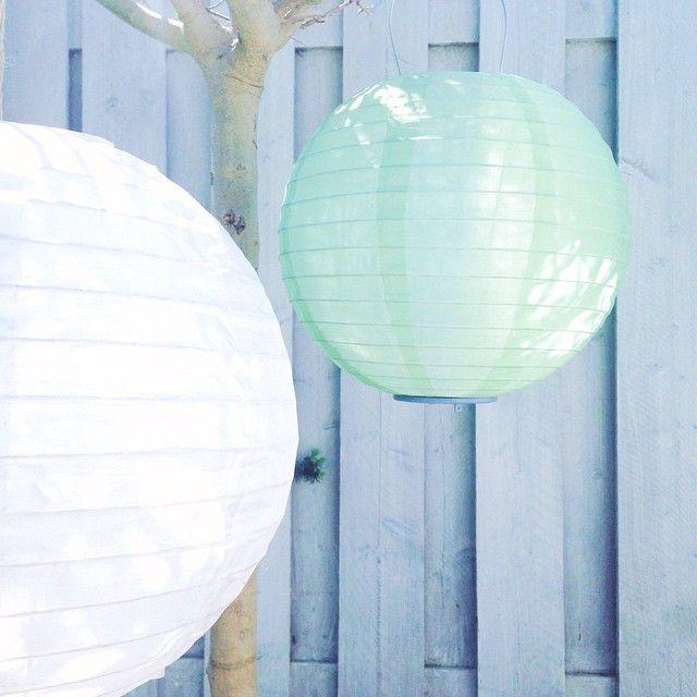Met HEMA solar lampions maken je tuin extra gezellig deze zomer.