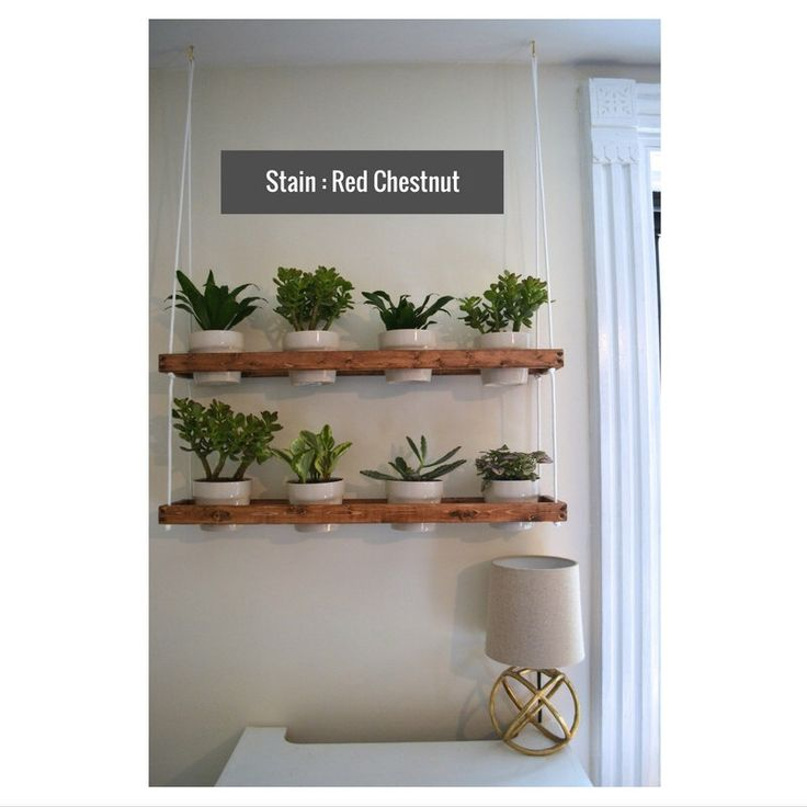 17 Best Ideas About Indoor Wall Planters On Pinterest