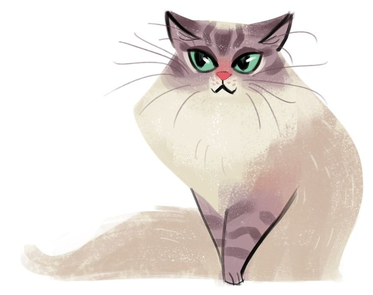 Green Eyes by daily cat drawings
