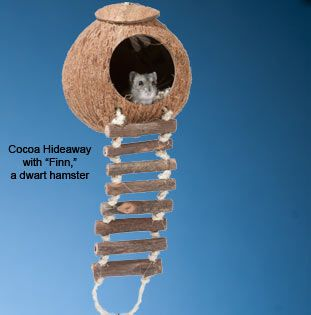 Naturals Coco Hideaway with Ladder. cool toy for gerbils. You could replace he rope with wire and make a longer lasting toy.
