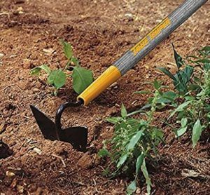 Basic Gardening Tools Ever You Need for Easy Gardening  A sturdy garden hoe #hoe #tools #sturdy