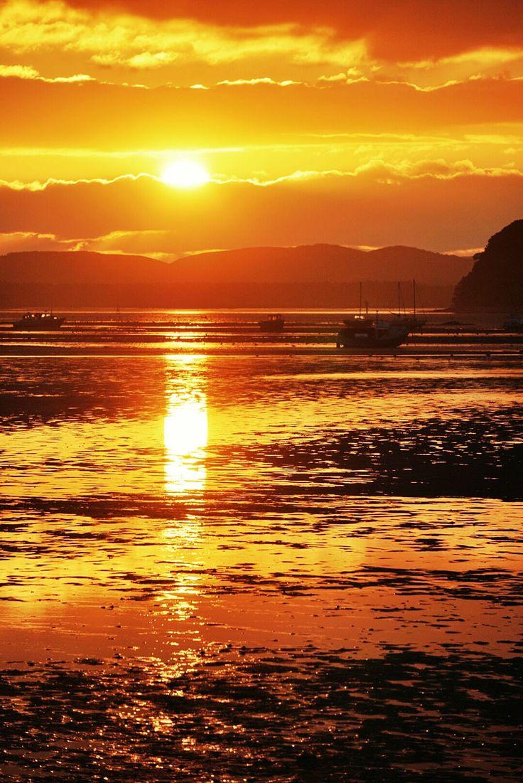 Sunset at Sandbanks (Dorset, England) by Nick Powell