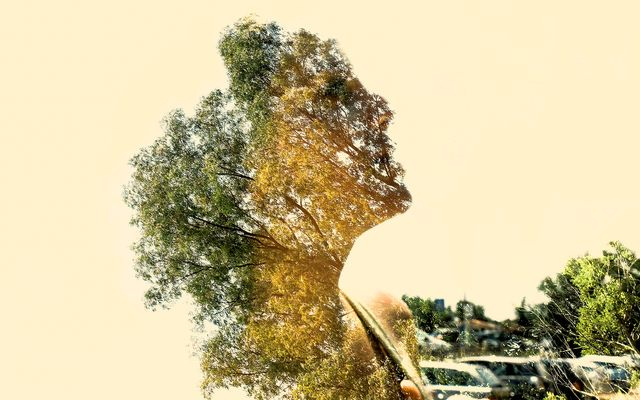 Spirit of Nature 3 by Gianluca Scolaro