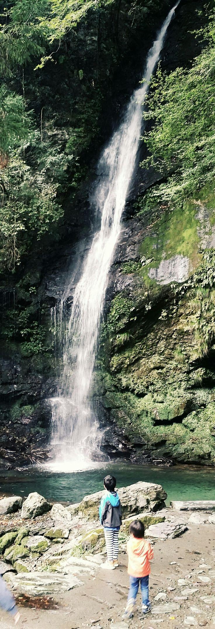 #滝 #祖谷かずら橋 #琵琶の滝