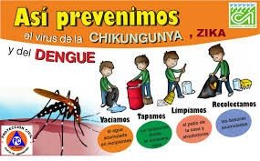 dibujos del dengue para niños - Buscar con Google